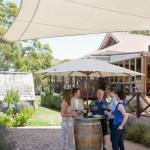Meet the winemaker, D'arenberg, McLaren Vale, South Australia